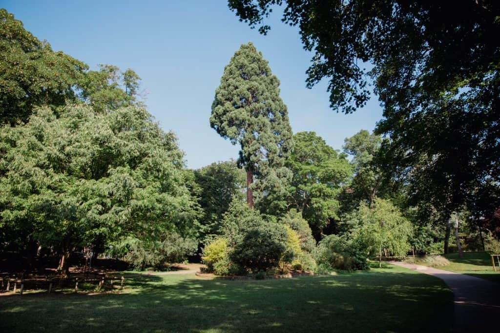 Magnifique parc avec ses arbres et ses allées