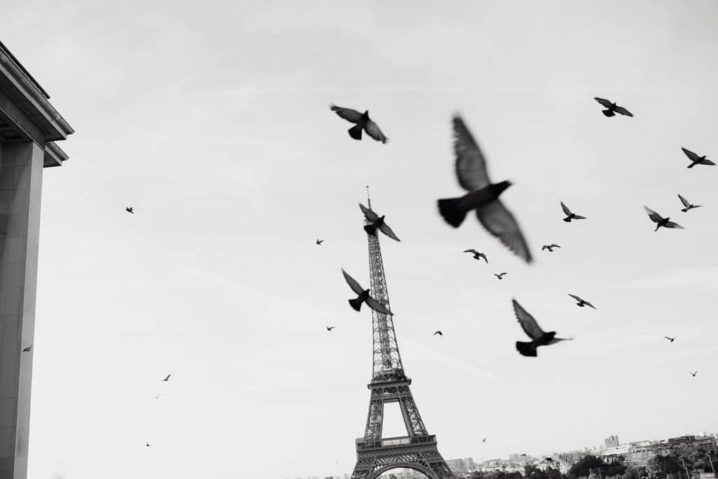 Photo de la tour eiffel artistique